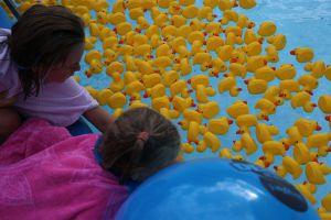 Update: Foto's Deldense zwemvierdaagse en eendjesrace online!