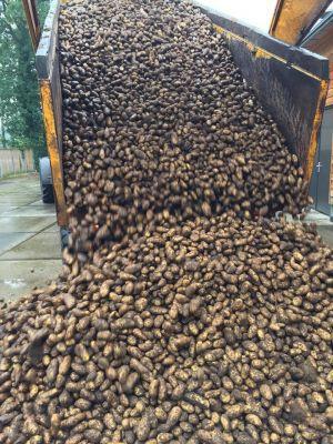 Aardappelen te koop bij Het Andere Leven in Bentelo