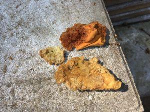 Opnieuw gebakken spons gevonden in Delden