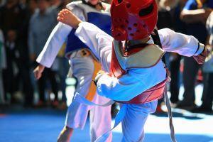 Taekwondo Simon