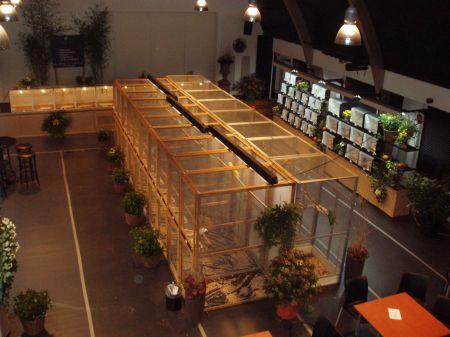 Ruim 300 vogels bij jaarlijkse tentoonstelling De Hobbyfluiters