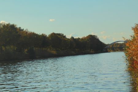 Internationale roeiwedstrijd van start tussen Deldense bruggen op Twentekanaal