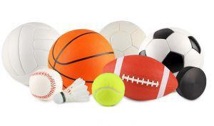 Activiteiten Hof Actief voor kinderen basisschool