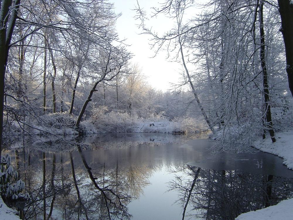 Winter foto van de week winterlandschap twickel nieuws nieuws uit delden het laatste - Foto van de eetkamer ...